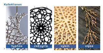 Kollektionen: hyphae - cell cycle - xylem - algae