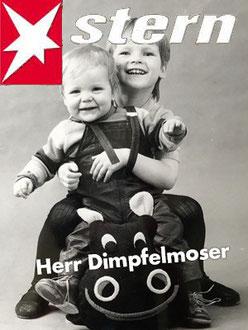 Herr Dimpfelmoser