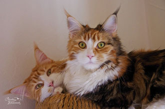 Ebby und ihr Papa