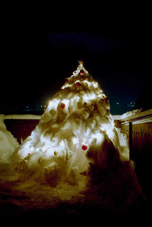 Weihnachtsbaum beleuchtet / Illuminated Christmas tree