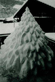 Weihnachtsbaum aus Schnee 2005-06 / Christmas tree of snow 2005-06