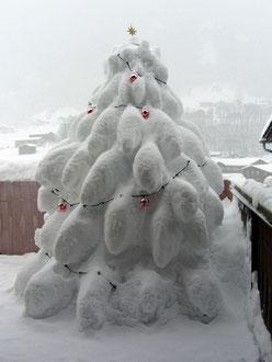 Weihnachtsbaum 2010-11 / Christmas tree 2010-11