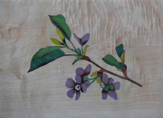 Éclosion - Branche de pommier en fleur  - marqueterie - Atelier Eclats de Bois - 38 isère