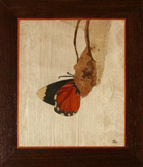 Naissance d'un papillon - marqueterie - Atelier Eclats de Bois - 38 isère