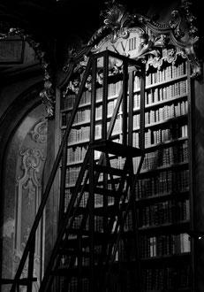 Vienna - 'Steps to Knowledge'