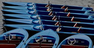 'Boats for Pleasure' - Vienna, Alte Donau