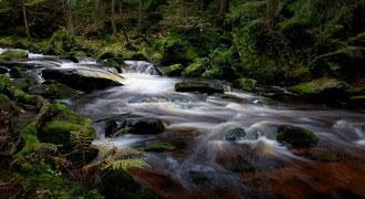 'Green Waters' - Lower Austria
