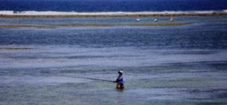 Bali - 'Fishermen'
