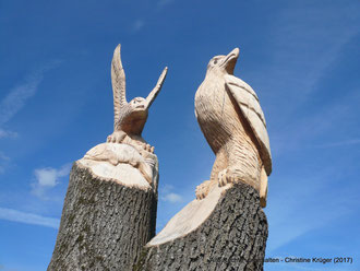 Details - Adlerpaar am Weg zum Wasserwanderrastplatz Alt Plestlin - Mai 2017