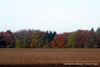 Silberberg im Herbst