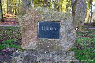 """Grab von """"Hanko"""" (Pferd des Freiherrn von Langen) in Alt Plestlin - grave of """"Hanko"""" (horse of Olympia-fame, baron von Langen) in Alt Plestlin"""