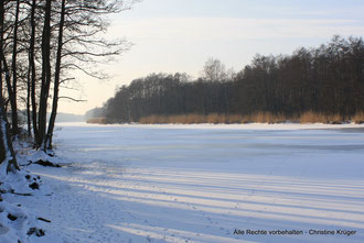 Peene - zugefroren  -  river Peene - frozen up