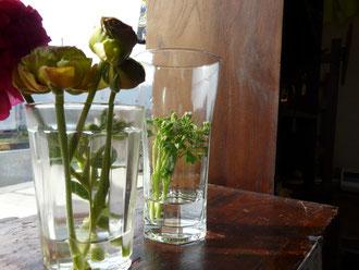 手前のお花は 大好きな ラナンキュラスです♪