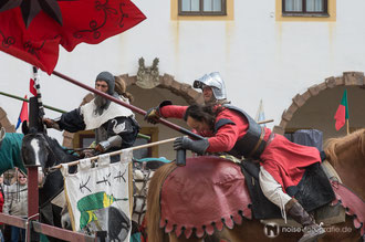 Wenzels Ritterspiele beim Gothardusfest 2014
