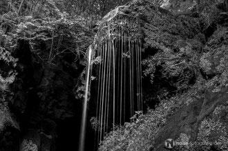 Amselfall im Elbsandsteingebirge / Sächsische Schweiz