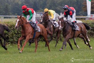 Pferderennen auf der Galopprennbahn Boxberg bei Gotha 2010
