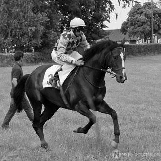 Pferderennen auf dem Boxberg 2011
