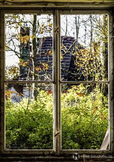 Fenster beim ehemaligen Truppenübungsplatz auf dem Krahnberg