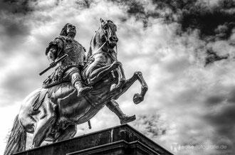 Dresden 2014 - der goldene Reiter