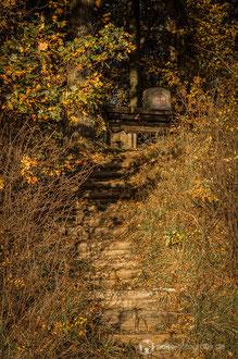 Der Riesen-Stein steht zum Gedenken an Georg Riesen (1866-1925), den Gründer der Düppelgemeinde auf dem Seeberg