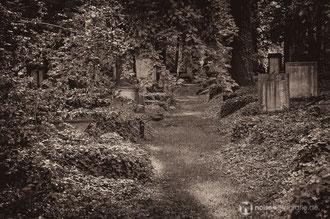 Eliasfriedhof in Dresden