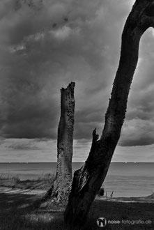 Küste bei Heiligendamm