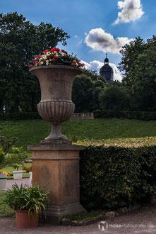Orangerie in GothaOrangerie in Gotha