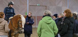 Doškolovací kurz pro trenéry s Danielou Gröben, Westfálská jezdecká škola Münster. Foto: Judith Schleicher