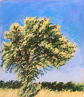 L'azerolier 1 pastel 21x23- Sylvie Berman artiste peintre