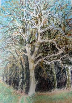 Invierno, pastel 29x39 Sylvie Berman artista pintor