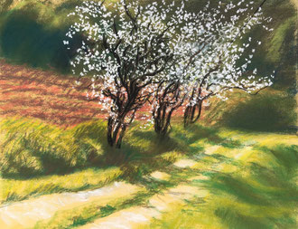 Mars à Cassagnac  24x30  croquis pastel  Sylvie Berman artiste peintre