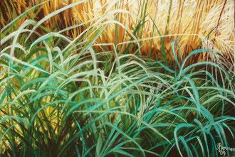 Trigos, hierbas azules, pastel 65x50 Sylvie Berman artista pintora