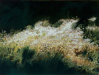 Glare, pastel  25x19 Sylvie Berman artiste peintre