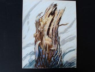 Despuès de la tormenta (2) pastel 29x39 Sylvie Berman artista pintor