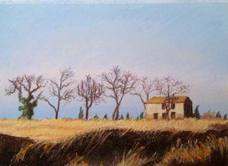 Surrender, pastel 11x10 Sylvie Berman artiste peintre