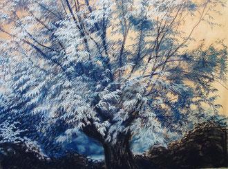 Nocturno en roso y azul, pastel 65x50Sylvie Berman artista pintor