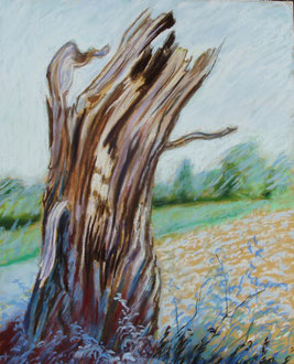 Despuès de la tormenta, pastel 29x39 Sylvie Berman artista pintor