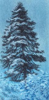 Grand pin de l'Alaric, pastel 30x12 - Sylvie Berman Artiste peintre