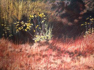 Apparition d'automne, pastel 75x60 cm Sylvie Berman artiste peintre