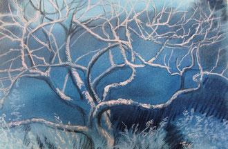 El arbol escondido, pastel 55x38 Sylvie Berman artista pintor
