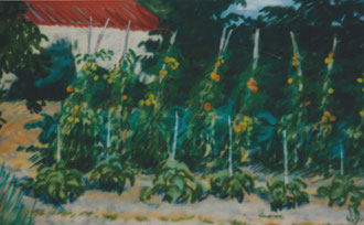 kitchen garden of Palaja, pastel 15x11 Sylvie Berman artiste peintre