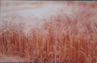 Trigo, mediodia, pastel 90x60 Sylvie Berman artista pintora