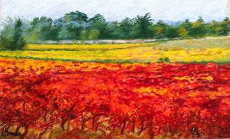 Auriac, vigne en automne, pastel, Sylvie Berman artiste peintre