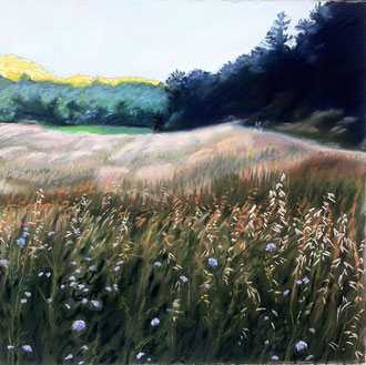 Apuntada del dia, pastel, 30x30 Sylvie Berman artista pintora