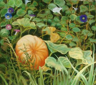 Calabaza y volubilis, pastel 50x45 Sylvie Berman artista pintora