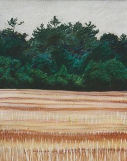 rastrojo, sera, pastel 40x30 Sylvie Berman artista pintora