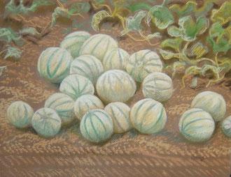 Melons de la Martelière , pastel 50x 65cm         Sylvie Berman artiste peintre