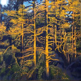 L'ours de l'aube Pastel 50x50cm Sylvie Berman artiste peintre