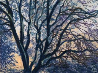 Nocturne bleu et or, pastel 36x27cm- Sylvie Berman artiste peintre