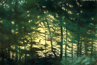 Largo bosque, pastel 70x50 Sylvie Berman artista pintora
